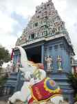 Sri Srinivasa Perumal, no Little India
